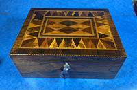 George III Rosewood Tunbridge Ware Box with Specimen Wood Inlay (5 of 15)