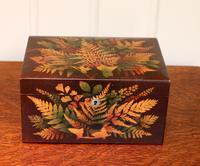 Mauchline Fernware Box (8 of 9)