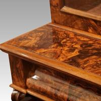 Victorian Burr Walnut Library Bookcase (5 of 11)