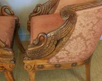 Fine Pair of Empire Style Mahogany Armchairs with Carved Swan Arms (4 of 7)