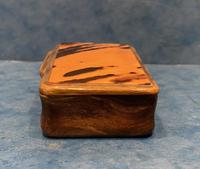 Victorian Horn & Tortoiseshell Snuff Box (4 of 13)