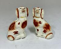 Antique Pair of Miniature Staffordshire Pottery Dogs c.1830 (5 of 5)