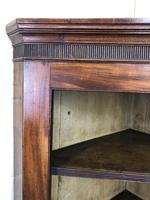 Antique 19th Century Mahogany Wall Hanging Corner Cupboard (M-1696) (8 of 11)
