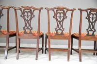 Set of 6 20th Century Mahogany Chippendale Style Dining Chair (8 of 13)