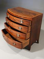 Handsome Regency Period Mahogany Bow Fronted Chest of Drawers (2 of 5)