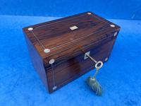 William IV Rosewood Twin Section Tea Caddy with Mother of Pearl Inlay (9 of 14)