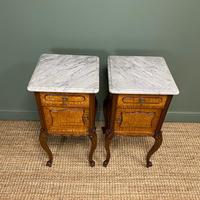 Pair of Hungarian Ash Antique Bedside Cabinets (5 of 6)