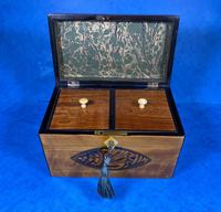 Late 18th Century Fruitwood and Applewood Twin Tea Caddy (9 of 21)