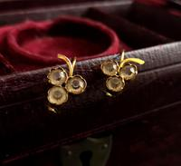 Antique Victorian 18ct Gold Paste Earrings, Grapes (8 of 10)
