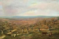 Large Superb Original 19thc West Sussex 'Tilgate Forest' Landscape Oil Painting (2 of 12)