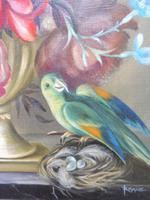 Oil on Canvas Still Life with Parakeet Artist George Rennie (6 of 11)