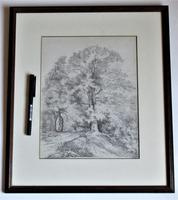 Emma Weeds Bacon, Suffolk, Study of an Oak Tree, Pencil, Initialled & Dated 1822, Framed (8 of 8)