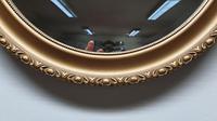 Edwardian Gilt Mirror (2 of 4)