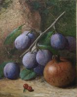 Charles Henry Slater Pair of Watercolours 'Plums, Pomegranate, Primroses & Birds Nest' (2 of 3)