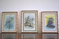 Set of Three Early 20th Century Silk Bird Paintings (2 of 10)