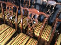 Set of Ten Georgian Style Mahogany Dining Chairs (9 of 13)