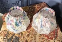 Pair of Edwardian Glass Light Shades (2 of 5)