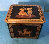 Victorian Italian  Sorento Ware Single Tea Caddy (10 of 16)