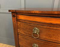 Regency Inlaid Mahogany Chest of Drawers (6 of 18)