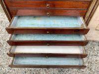 Georgian Collectors Tabletop Specimen Cabinet (18 of 26)