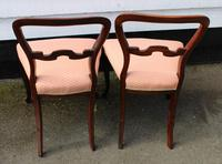 1900s Pair of Mahogany Cab Leg Chairs Pale Pink Upholstery (4 of 4)