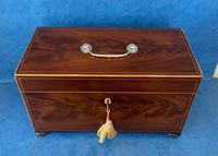 George III Mahogany Twin Canister Tea Caddy (11 of 17)
