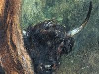 Victorian Scottish Highland Painting of Cattle by Aster Richard Chilton Corbould (23 of 40)