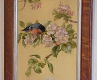 Pair of Oil Paintings of Finches in Blossom (7 of 12)