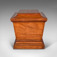 Large Antique Sarcophagus Cellarette, English, Mahogany, Wine Cooler, Regency (5 of 12)