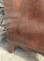 Large Regency Mahogany Bow Front Chest of Drawers (18 of 19)