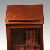 Regency Mahogany Library Cabinet (9 of 10)