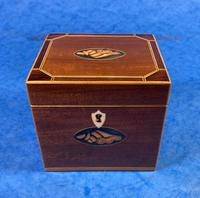 Georgian Single Mahogany Tea Caddy with Inlaid Shell (4 of 12)