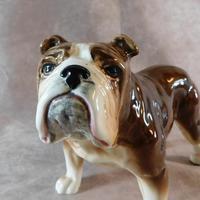Sylvac Bulldog (3 of 8)
