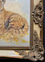 Exceptional 'pride Of Lion Cubs' Large Wildlife Oil Painting By 'silvia Duran' (10 of 12)
