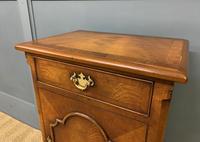 Queen Anne Style Burr Walnut Bedside Cupboard (5 of 10)