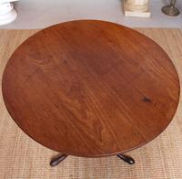 Georgian Tripod Table Tilt Top Mahogany Folding (6 of 9)