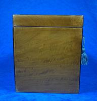 George III Satinwood Twin Tea Caddy with Prince of Wales Inlay (3 of 15)