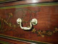 Georgian Mahogany Polychrome Painted Chest on Chest (4 of 12)