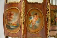 French Ormolu Mounted Display Cabinet (6 of 12)