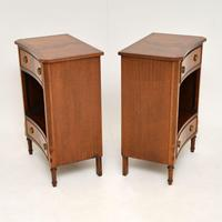 Pair of Antique Regency Style Mahogany Bedside Cabinets (7 of 10)