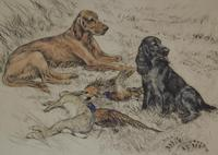Hunting Dogs Field Spaniels G Vernon Stokes Signed Limited Edition (2 of 6)