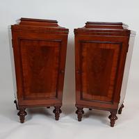 Pair of Regency Mahogany Pedestal Cabinets (4 of 8)