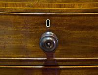 Regency Period Mahogany Bow-fronted Chest (5 of 7)