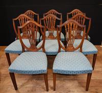 Set 8 Hepplewhite Dining Chairs Mahogany (4 of 7)