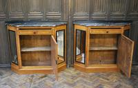 Pair of French Biedermeier Side Cabinets (2 of 7)