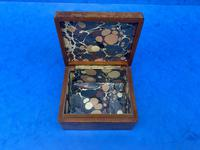 1920s Burr Cedar Box with Engraved Mother of Pearl Panel to the Top of a Cathedral (3 of 8)