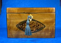Late 18th Century Fruitwood and Applewood Twin Tea Caddy (17 of 21)