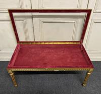 French Gilt Bijouterie Cabinet Coffee Table (2 of 15)