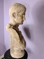 Large Plaster Bust of Augustus (4 of 7)