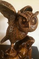Large Hand Carved Wooden Owl (3 of 8)